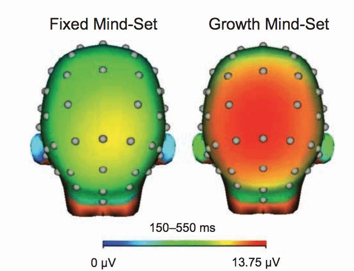 fixed mindset vs growth mindset brain images