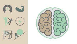 NEUROPLASTICITY AND BRAIN HEALTH