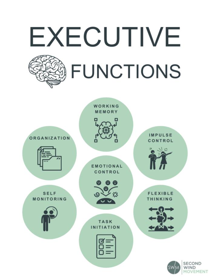Executive brain functions